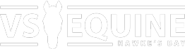 Vet Services Equine